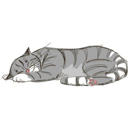 sleeping cat. sketch. Doodle picture of cat Иллюстрация