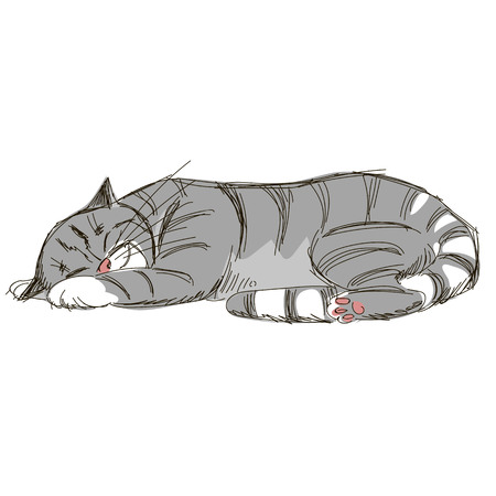sleeping cat. sketch. Doodle picture of cat Illustration