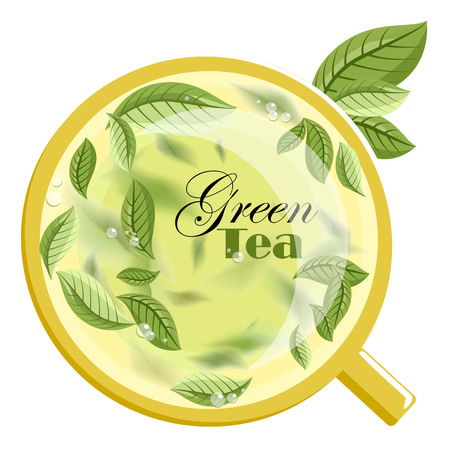 green tea. green tea leaves. green tea mug. vector