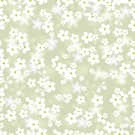 white flower. vector seamless background with chamomile