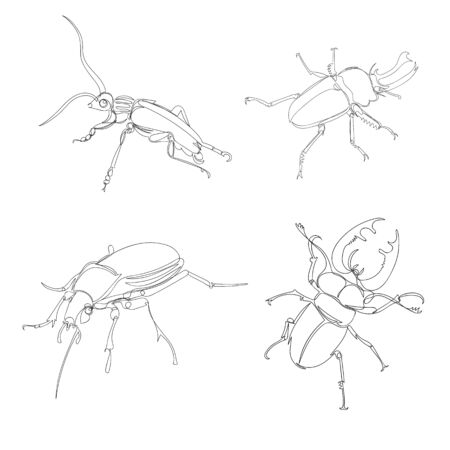 beetle. one line. vector image of an insect. a set of images of beetles of different types