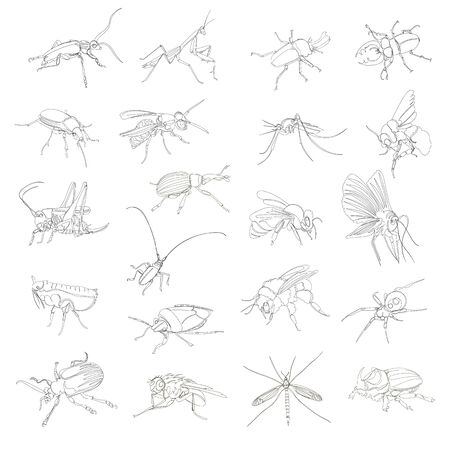 a variety of insects. continuous contour drawing. one line. a set of vectors