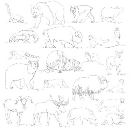 wild animal. vector images of different animals. one line. set 向量圖像
