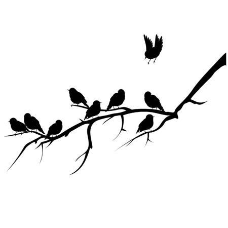 vector image of birds on a branch. silhouette of birds
