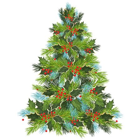 Christmas tree. Holly leaves and spruce branches. vector illustration 向量圖像