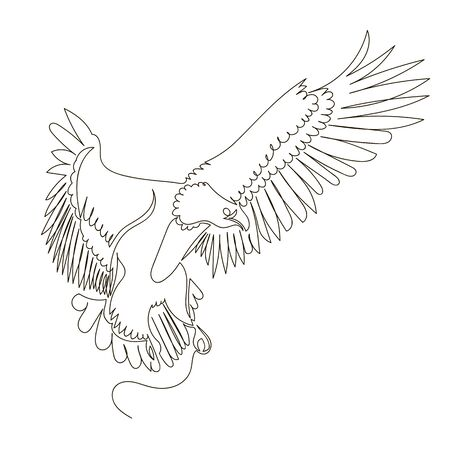 eagle. flying bird. vector contour image of an eagle. one continuous line 向量圖像