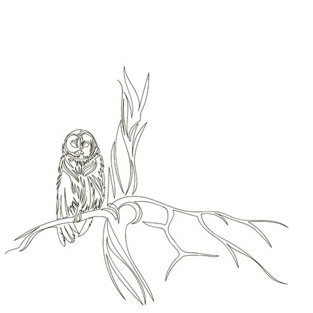 owl. vector outline image of an owl on a tree. owl on a branch. one line. continuous line Foto de archivo - 135022762