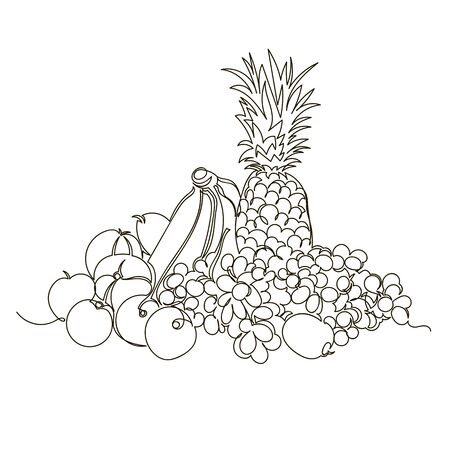 fruits. vector outline image of various fruits and berries. one line. continuous line