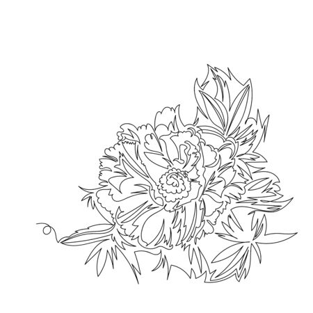 peony. vector contour image with one continuous line. a picture of a flower outline Foto de archivo - 137410180
