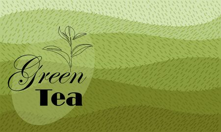 green tea. vector image of tea fields. abstract image. label 矢量图像