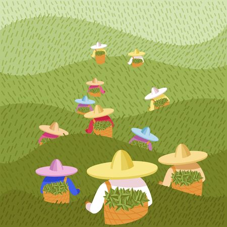 vector image of tea pickers. people in colored hats and colored clothes with baskets of leaves