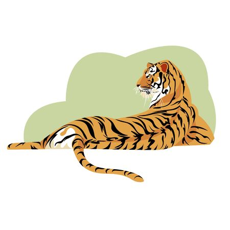 tiger. big cat. vector image of a tiger. wild beast. isolated image