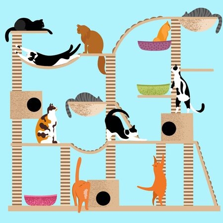 the house of cats. game complex for cats. set of vector images with Pets