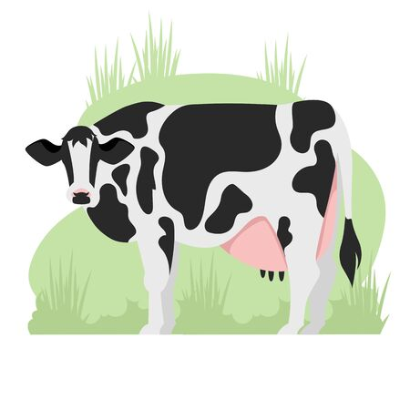 cow. cattle. vector image of a black and white cow. farming