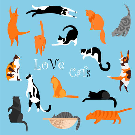 cats. a set of vector isolated images of cats. cats in different poses
