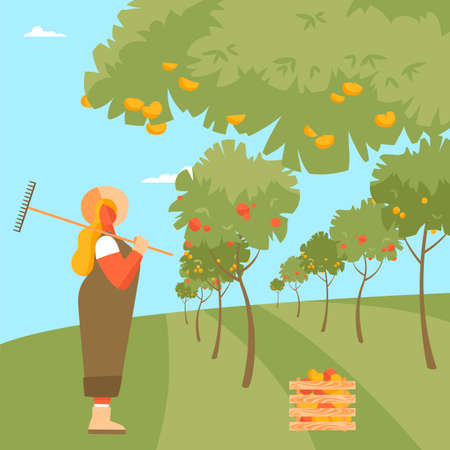 fruit garden. the fruit on the trees. farm of fruit crops. vector illustration