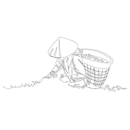 tea picker. vector contour image of a man on a tea plantation. one line