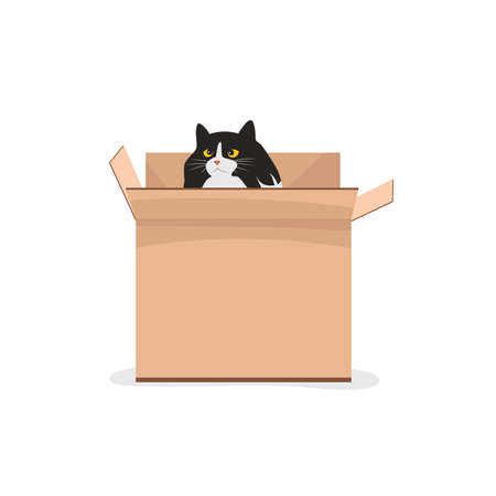 cat in a box. vector illustration of a pet in a cardboard box. cat playing 免版税图像 - 157186648