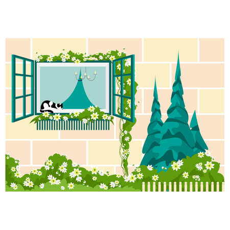 vector illustration of a window with flowers. cat on the windowsill. window view from outside 矢量图像