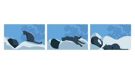 sleep with a pet. man and cat. set of vector illustrations 矢量图像