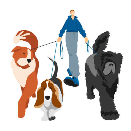 walking the dogs. man walks the dogs. vector illustration of dogs of different breeds