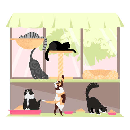 cat shelter. the cattery. cat cafe. vector illustration of cats of different breeds 矢量图像