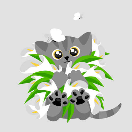 a kitten with flowers. vector greeting card with a cute cat and a bouquet of calla lilies 矢量图像