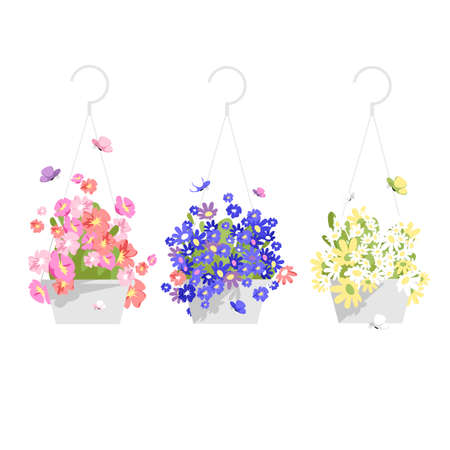 a set of vector isolated images of flowers in hanging planters. colorful plants 矢量图像