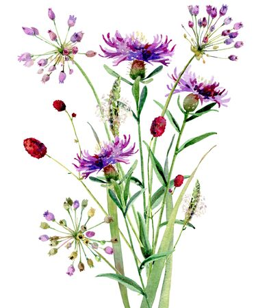 A small bouguet of watercolor wild flowers