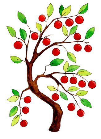 Watercolor apple tree with apples on white background Stock fotó