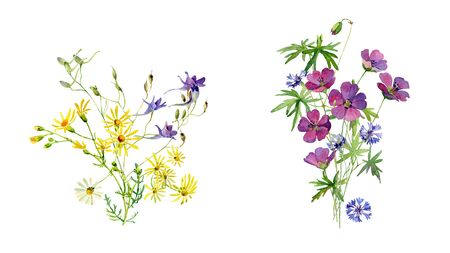 Two watercolor bouquet of wild flowers on a white background