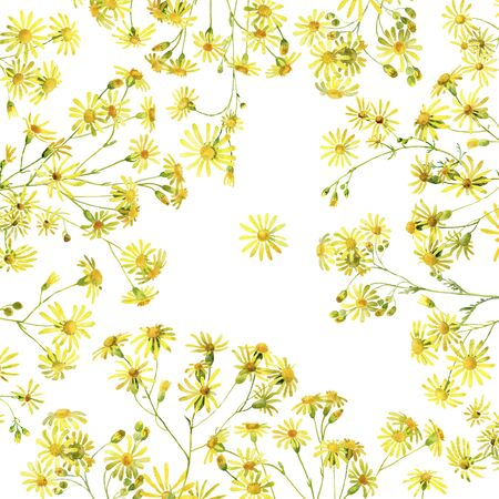 Background of yellow watercolor flowers
