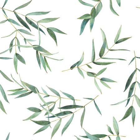 Seamless pattern of watercolor eucalyptus leaves,background