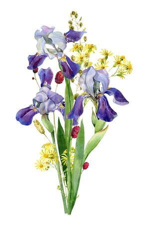 Watercolor bouquet of wild flowers irises