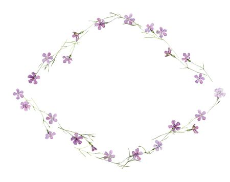 Watercolor rhombus frame made of wild carnation flowers