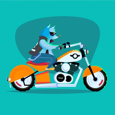 bobber: Raccoon on the motorcycle. Cool vector illustration