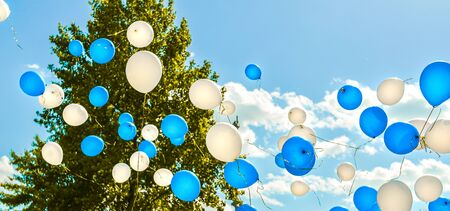 Blue and white flying balloons against blue sky with clouds and green tree on sunny day. Banner. Holiday, celebration, Childrens Day, wedding, graduation concept. Peace, love, freedom, purity idea.