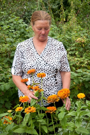 Pensioner takes care of the flowers in the garden at the cottage photo