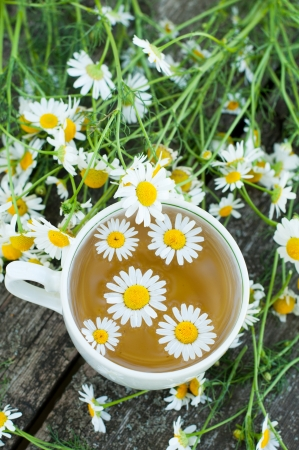 Herbal tea of chamomile flowers photo