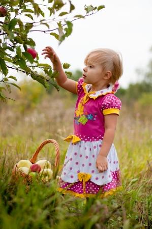 Holčička 2,5 rok na pick jablka