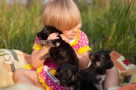 Little girl playing with puppies photo