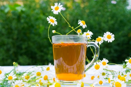 Herbal chamomile tea in a glass cup photo