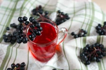 compote: Compote of black chokeberry Stock Photo