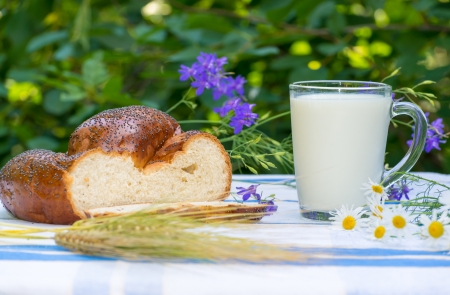 Cup of milk and buns with poppy seeds photo