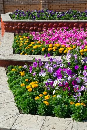 3 装飾用の花壇 写真素材