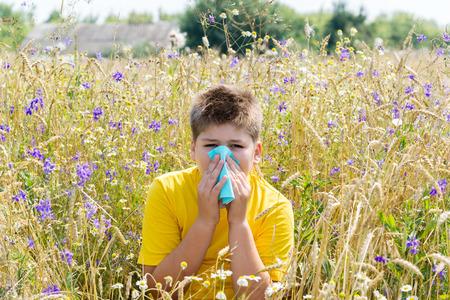 antihistamine: Boy with allergic rhinitis in the meadow