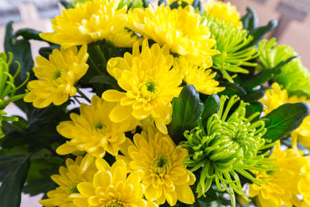 wonderfull: Bouquet of yellow and a green Chrysanthemum