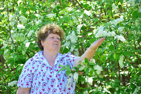 commercial tree care: Pensive elderly woman in the spring nature with cherry flowers Stock Photo