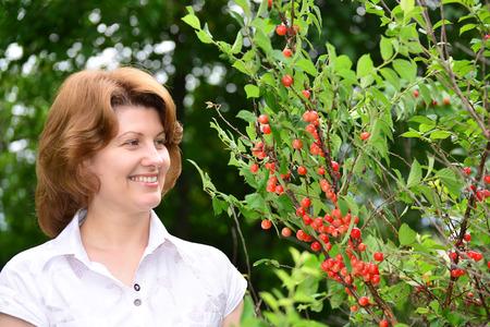 harvests: A Woman harvests cherries in the garden