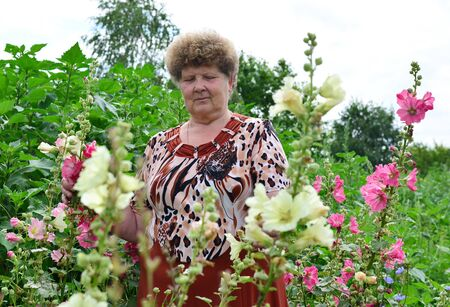 near: Adult woman standing near a blooming mallow